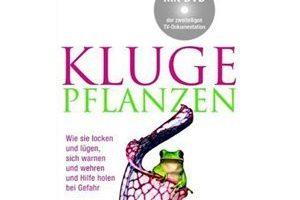 06_2010_kluge_pflanzen02.jpg