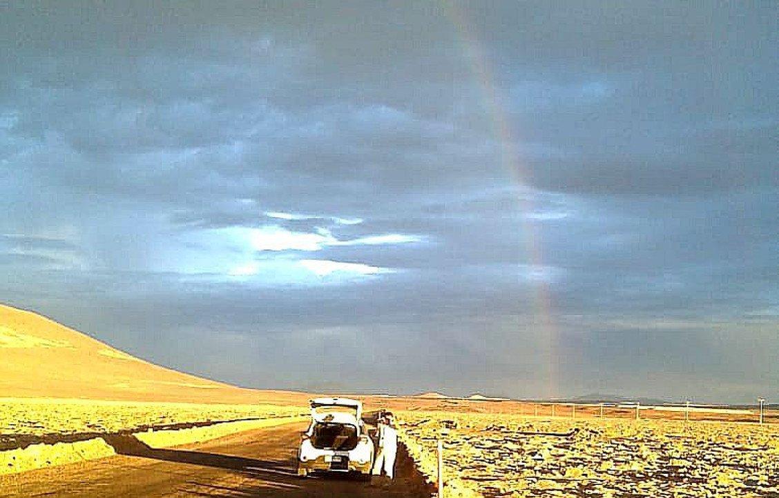 Tödlicher Regen in der Atacama-Wüste