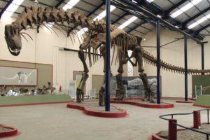 13-10-31 Dino.jpg