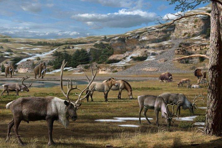 14-02-05-megafauna.jpg