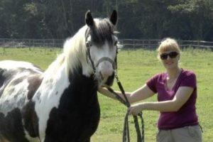 14-08-04 Pferd.jpg