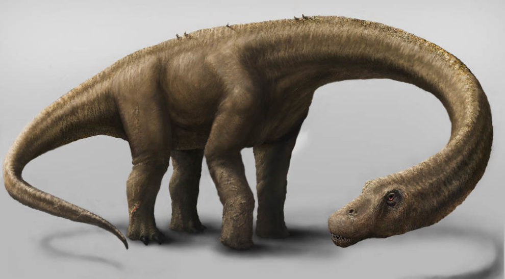 14-09-04 Dreadnoughtus.jpg