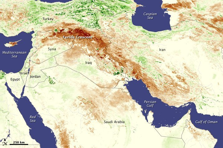15-03-03-syria.jpg