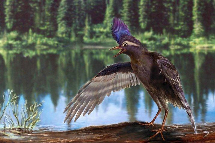 15-05-05-bird.jpg