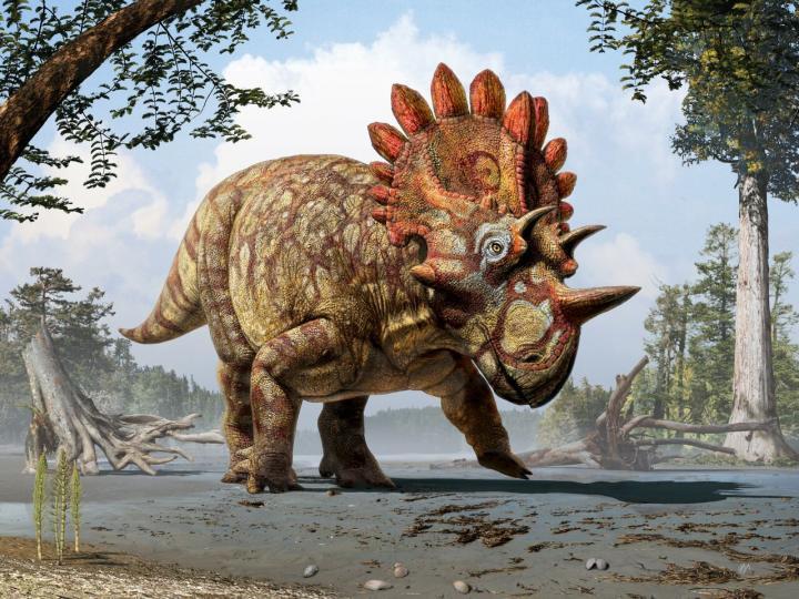 15-06-05 Dino.jpg
