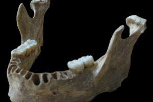 15-06-22 Neandertaler.jpg
