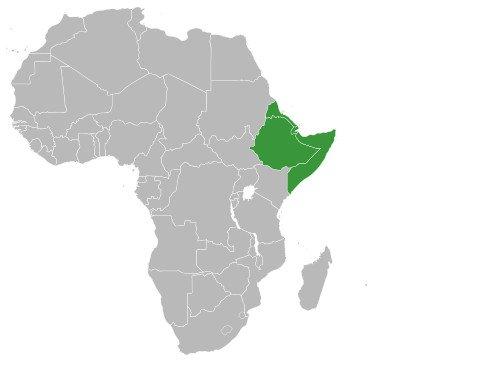 15-10-09 Horn von Afrika.jpg