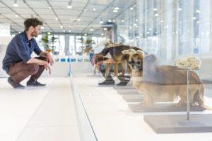 15-11-16 Anthropozaen Ausstellung.jpg