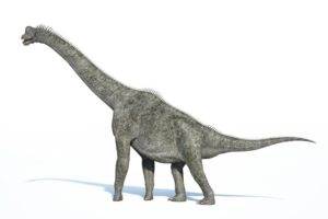 16-02-18 Sauropoden.jpg