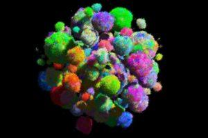 16-03-17+Tumormodell_Seite.jpg