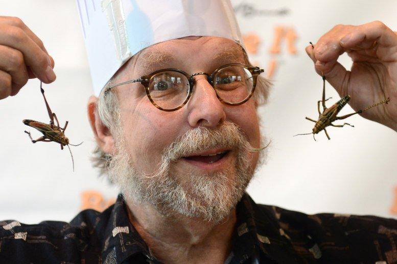 16-05-27 Insekten.jpg