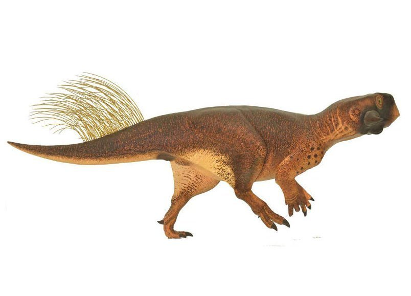 16-09-15 Dino.jpg