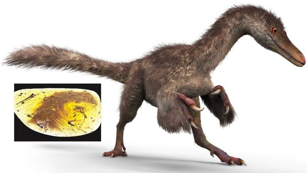 16-12-08 Dino.jpg
