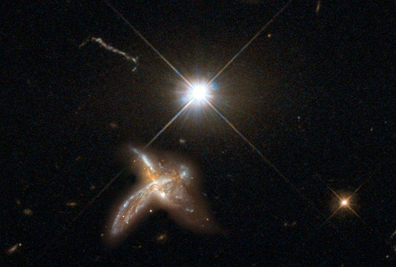 17-05-29 Galax.jpg