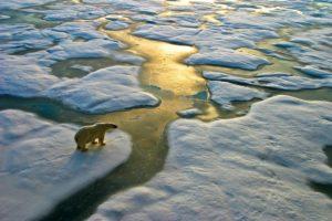 17-11-20 Arktis.jpg