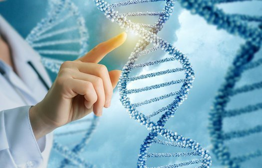 17-12-07 Genetik.jpg