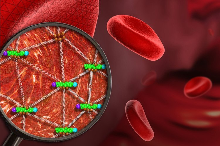 18-02-01 Blut.jpg