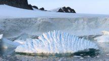 Antarktiseis