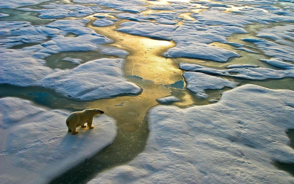 Keine Pause bei der globalen Erwärmung