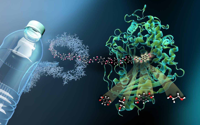Mit molekularen Scheren gegen Plastikmüll