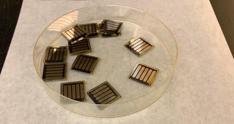 Koffein-Solarzellen
