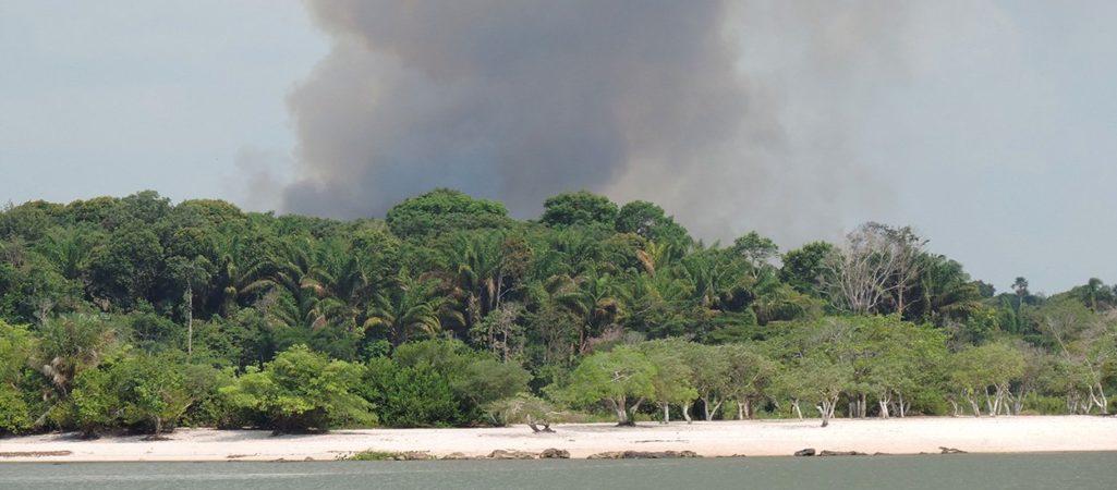 Amazonasfeuer