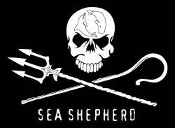 800px-Sea-Shepherd-Logo_250.jpg