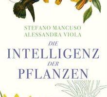 B-11-15 Die Intelligenz der Pflanzen.jpg