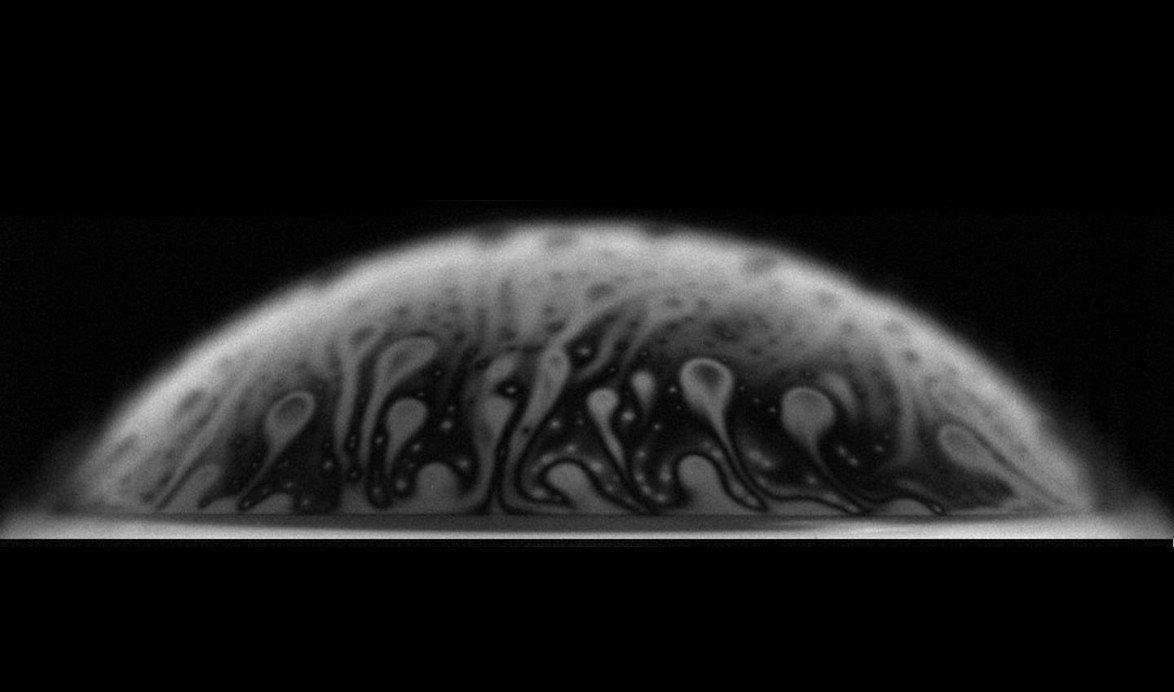 Bakterien machen Blasen zu ihren Schleudern