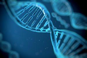 DNA Helix.jpg