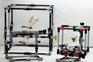 Legoinsekten_Seite.jpg