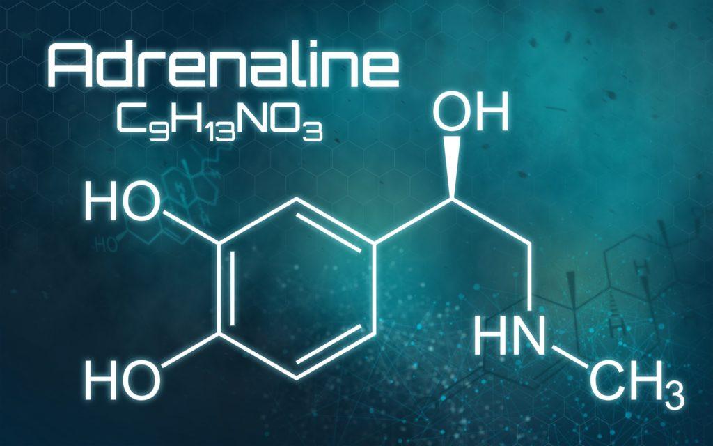 Strukturformel des Adrenalins