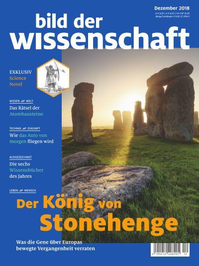 Der König von Stonehenge