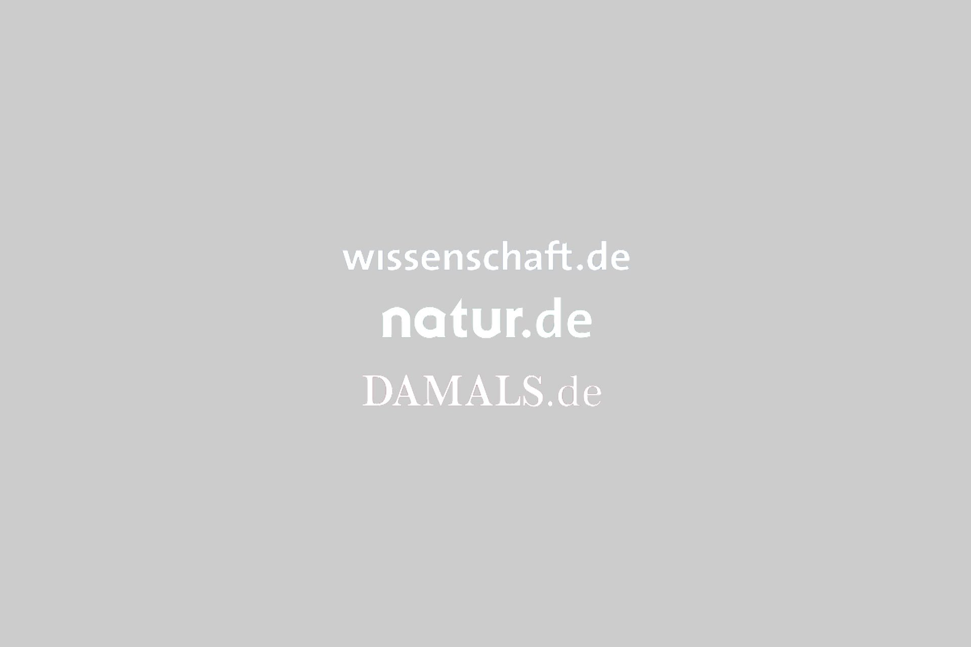 Das ultimative Anti-Aging-Mittel