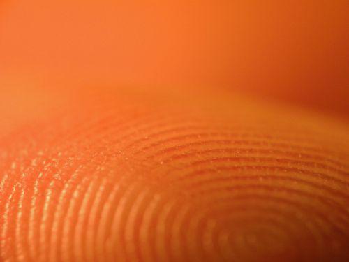fingerabdruck02.jpg