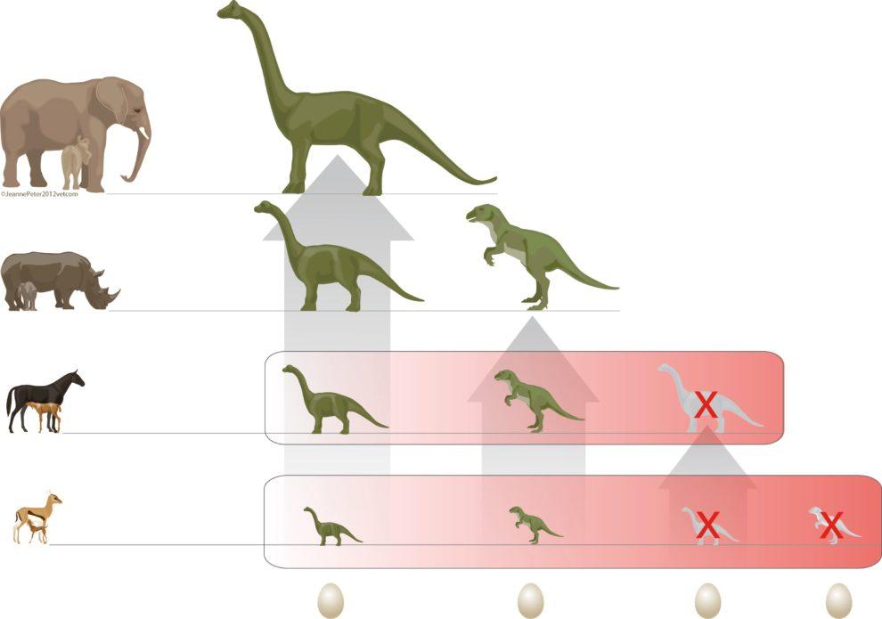 grafik_dinosaurier.jpg