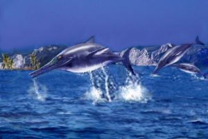 ichthyosaurier.jpg