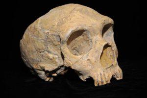 neandertaler05.jpg