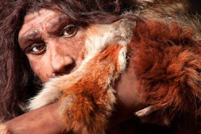 Dossier Neandertaler