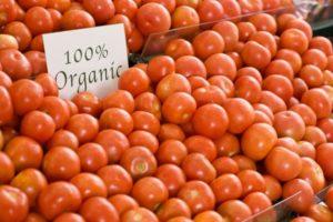 tomaten01.jpg