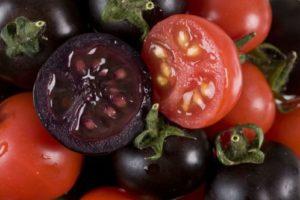 tomaten_onl.jpg